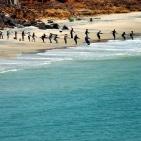 pescatori-a-toubab-dialaw