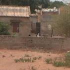 toubab Dialaw